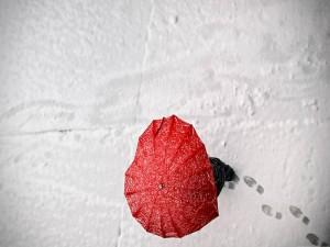 Postal: Paraguas rojo en la nieve