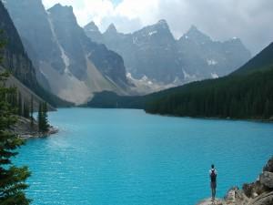 Visitante en el lago