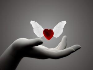 Postal: Corazón con alas