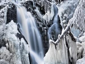 Postal: Cascada congelada