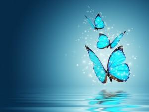 Postal: Magia de mariposas