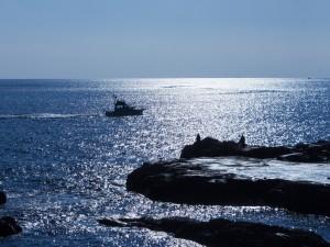 Policía marítima en el mar