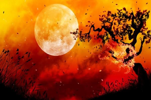 Mujer árbol y la luna llena