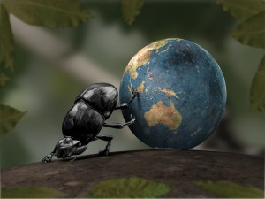 Postal: Escarabajo moviendo al mundo