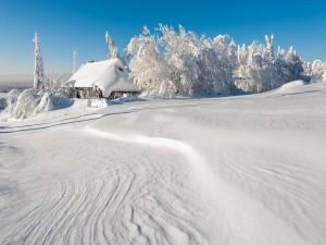 Postal: Paisaje invernal