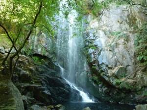 Bonita caída de agua