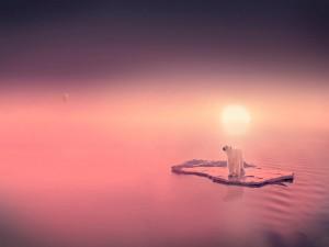 Postal: Oso polar a la deriva
