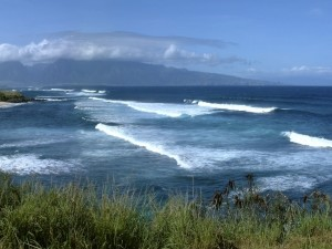 Surfistas en el mar