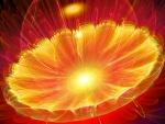 Flor abstracta de color amarilla