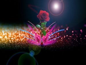 Postal: Una rosa entre luces de colores