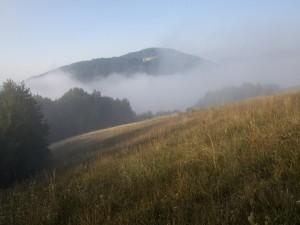 Postal: Niebla en la naturaleza