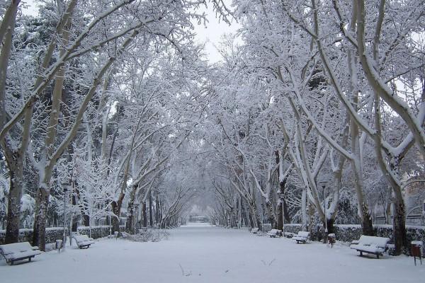 Nieve en el parque de Abelardo Sánchez (Albacete)