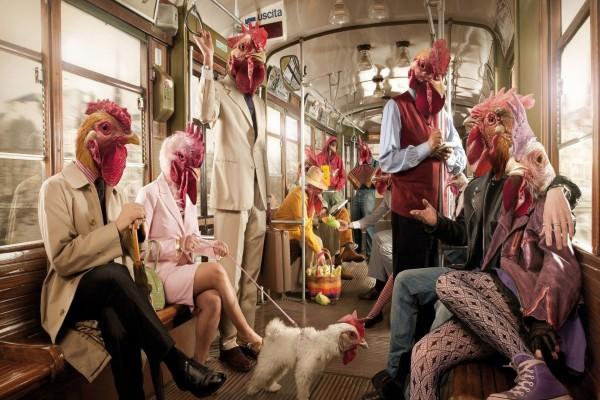 El tren de los pollos
