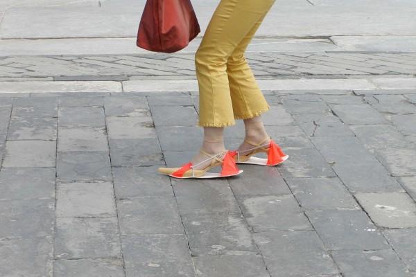 Protector para zapatos