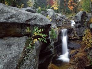 Cascada entre rocas y árboles