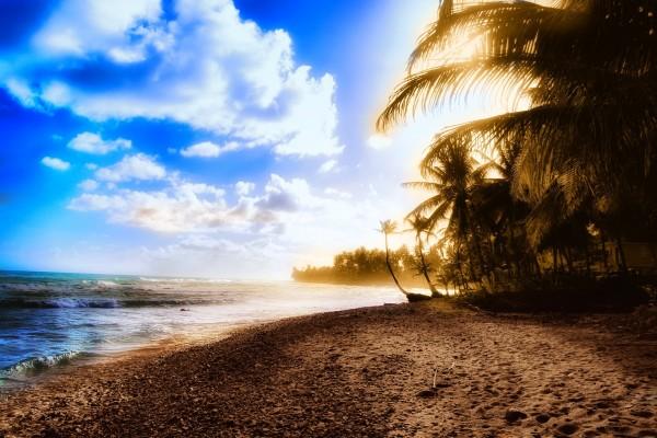 Playa iluminada por el sol