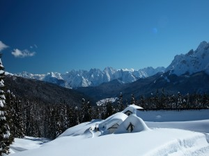 Casas, montañas y pinos cubiertos de nieve