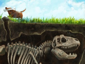 Perro con un hueso de dinosaurio