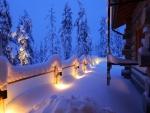 Luces cubiertas de nieve