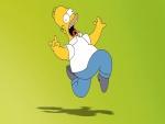 Homer y su sombra