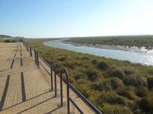 Postal: El río Tinto desde el Puerto de la Ribera