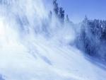 Pisadas en la nieve