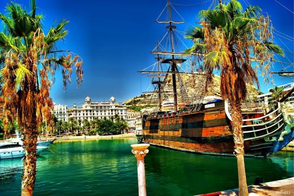 Barco junto a las palmeras del puerto