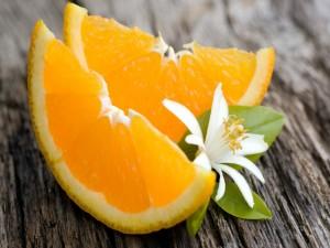 Postal: Flor y naranjas
