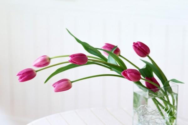 Jarrón con tulipanes rosas