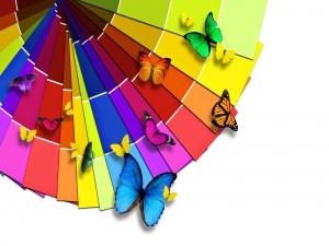 Mariposas y colores