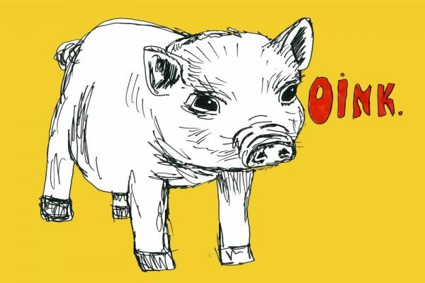 Oink gruñe el cerdo