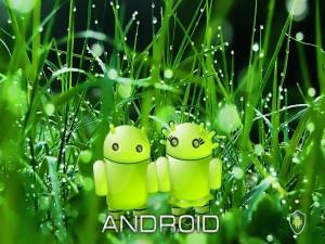 Postal: Android en pareja