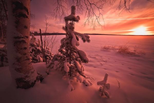 Atardecer en un lugar nevado