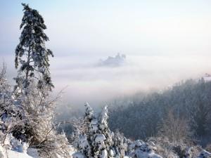Postal: Nieve y niebla
