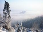 Nieve y niebla