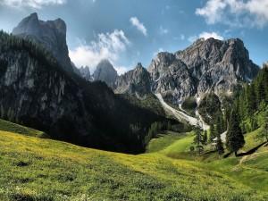 Postal: Casita en la pradera de las montañas