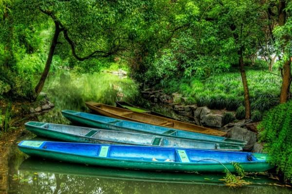 Barcas de colores en el río
