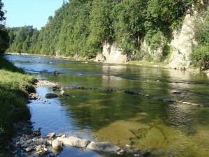 Día soleado en el río