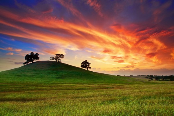 Contraste de colores, cielo y tierra