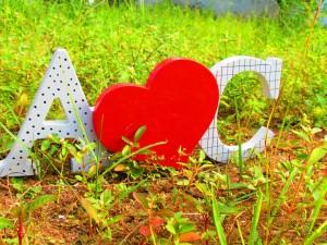 Iniciales y corazón sobre la hierba