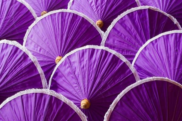 Paraguas de color púrpura