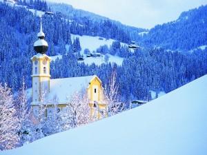 Iglesia y pinos nevados