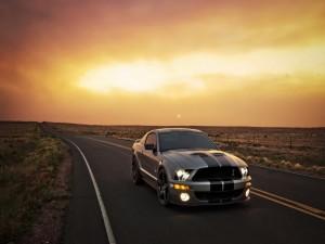 Postal: Mustang en la carretera al atardecer