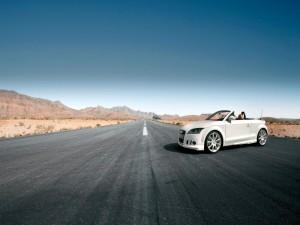 Audi en mitad de la carretera