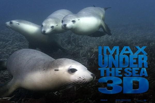 Bajo el mar en 3D Imax
