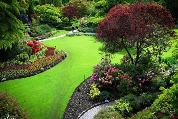 Hermoso jardín con árboles y flores