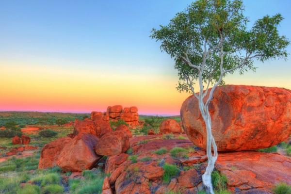Los tibios rayos del sol, caen sobre las rocas y un árbol