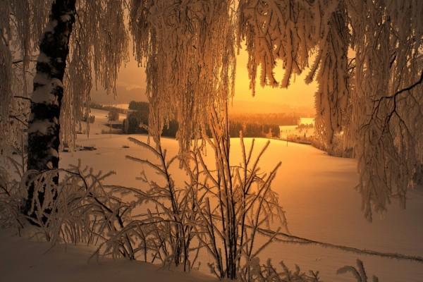 El sol calentando el paisaje nevado