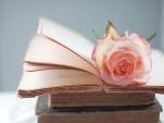 Una rosa sobre libros antiguos