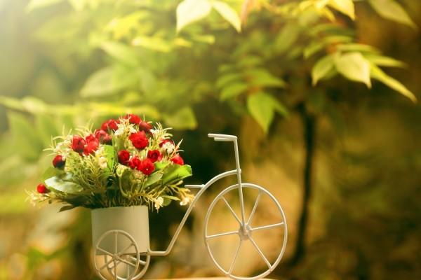 Flores en un original macetero